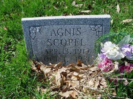 SCOPEL, AGNIS - Carroll County, Ohio | AGNIS SCOPEL - Ohio Gravestone Photos