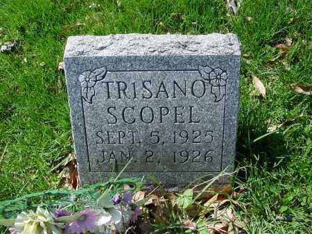 SCOPEL, TRISANO - Carroll County, Ohio | TRISANO SCOPEL - Ohio Gravestone Photos
