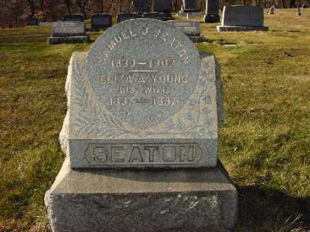 YOUNG SEATON, ELIZA A. - Carroll County, Ohio | ELIZA A. YOUNG SEATON - Ohio Gravestone Photos