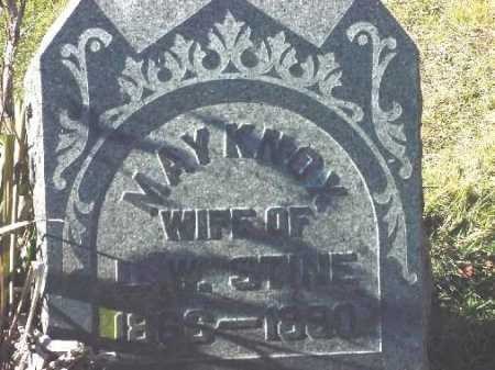 KNOX STINE, MAY - Carroll County, Ohio | MAY KNOX STINE - Ohio Gravestone Photos
