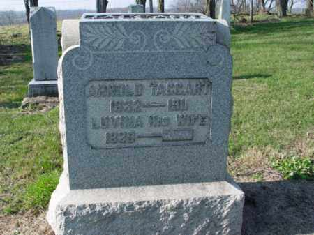 TAGGART, LUVINA - Carroll County, Ohio | LUVINA TAGGART - Ohio Gravestone Photos