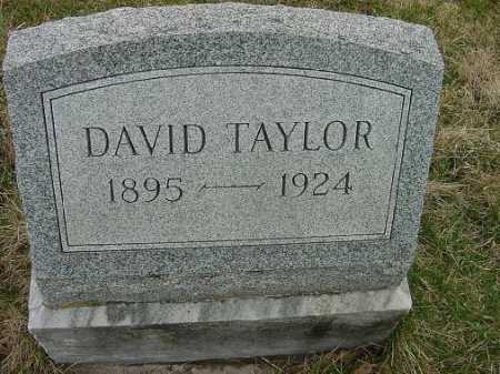 TAYLOR, DAVID - Carroll County, Ohio | DAVID TAYLOR - Ohio Gravestone Photos