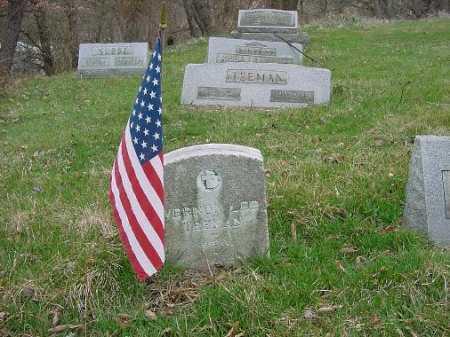 TEEMAN, VERNON - Carroll County, Ohio | VERNON TEEMAN - Ohio Gravestone Photos