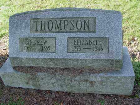 THOMPSON, ELIZABETH - Carroll County, Ohio | ELIZABETH THOMPSON - Ohio Gravestone Photos