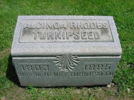 RHODES TURNIPSEED, ALCINDA - Carroll County, Ohio | ALCINDA RHODES TURNIPSEED - Ohio Gravestone Photos