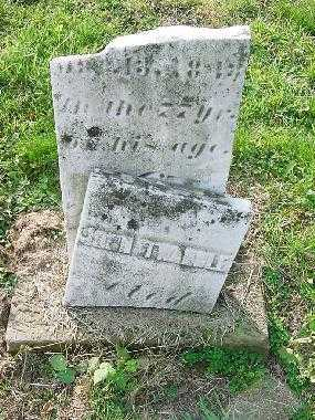 TWADDLE, JOHN - Carroll County, Ohio | JOHN TWADDLE - Ohio Gravestone Photos