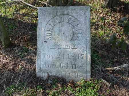 WATKINS, JOHN - Carroll County, Ohio | JOHN WATKINS - Ohio Gravestone Photos