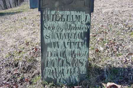 WATT, WILLIAM J. - Carroll County, Ohio | WILLIAM J. WATT - Ohio Gravestone Photos