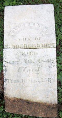 ABERCROMBIE, ELIZABETH - Champaign County, Ohio   ELIZABETH ABERCROMBIE - Ohio Gravestone Photos