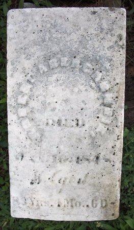ABERCROMBIE, ROBERT - Champaign County, Ohio | ROBERT ABERCROMBIE - Ohio Gravestone Photos