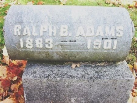 ADAMS, RALPH B - Champaign County, Ohio   RALPH B ADAMS - Ohio Gravestone Photos