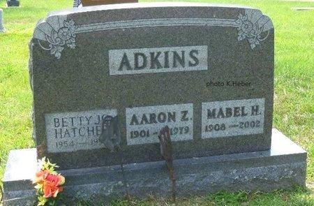 ADKINS, AARON Z - Champaign County, Ohio | AARON Z ADKINS - Ohio Gravestone Photos