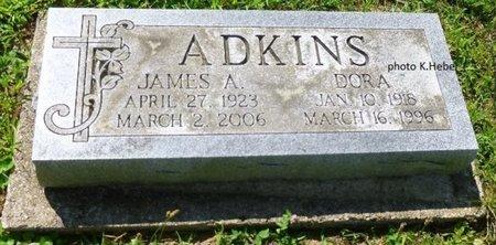 ADKINS, DORA - Champaign County, Ohio | DORA ADKINS - Ohio Gravestone Photos