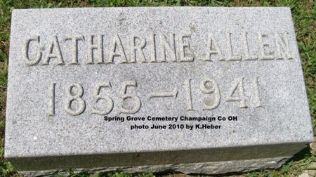 ALLEN, MAHALA CATHERINE - Champaign County, Ohio | MAHALA CATHERINE ALLEN - Ohio Gravestone Photos
