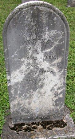 ALLEN, MARTHA - Champaign County, Ohio | MARTHA ALLEN - Ohio Gravestone Photos