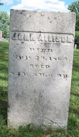ALLISON, JOHN - Champaign County, Ohio | JOHN ALLISON - Ohio Gravestone Photos