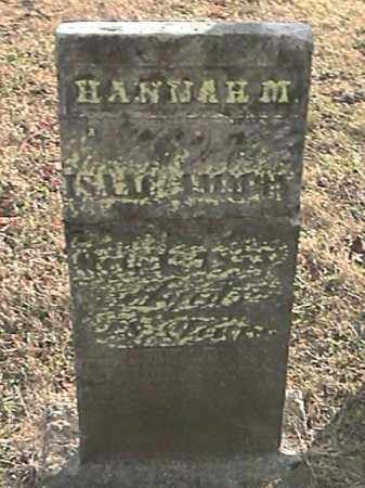 AMMON, HANNAH M. - Champaign County, Ohio | HANNAH M. AMMON - Ohio Gravestone Photos