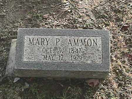 AMMON, MARY PHEOBE - Champaign County, Ohio | MARY PHEOBE AMMON - Ohio Gravestone Photos