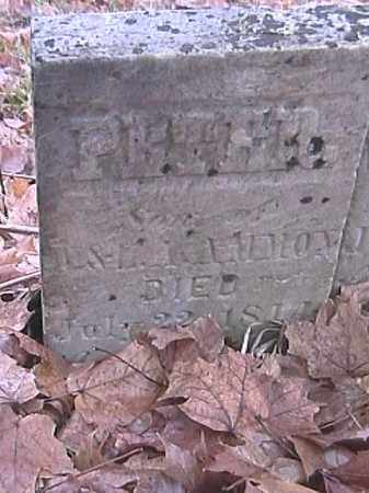 AMMON, PETER - Champaign County, Ohio | PETER AMMON - Ohio Gravestone Photos