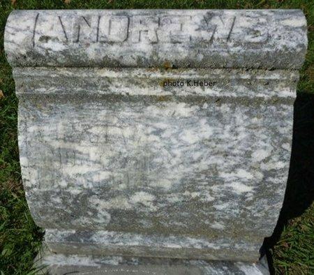 ANDREWS, LUCRETIA JANE - Champaign County, Ohio | LUCRETIA JANE ANDREWS - Ohio Gravestone Photos