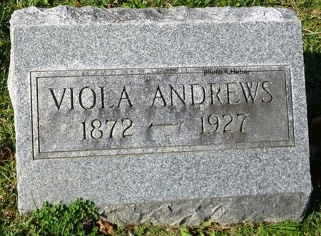 ANDREWS, VIOLA MAY - Champaign County, Ohio | VIOLA MAY ANDREWS - Ohio Gravestone Photos