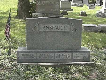 ANSPAUGH, FORREST EDWARD - Champaign County, Ohio | FORREST EDWARD ANSPAUGH - Ohio Gravestone Photos
