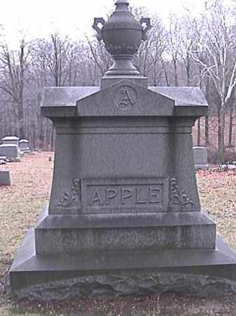 APPLE, ABRAHAM - Champaign County, Ohio | ABRAHAM APPLE - Ohio Gravestone Photos