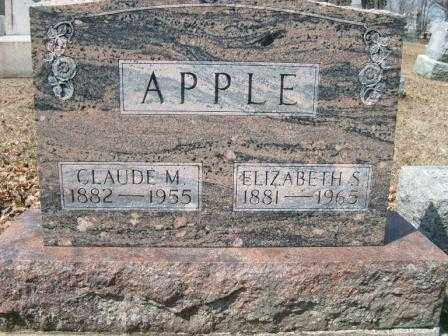 APPLE, ELIZABETH S. - Champaign County, Ohio | ELIZABETH S. APPLE - Ohio Gravestone Photos