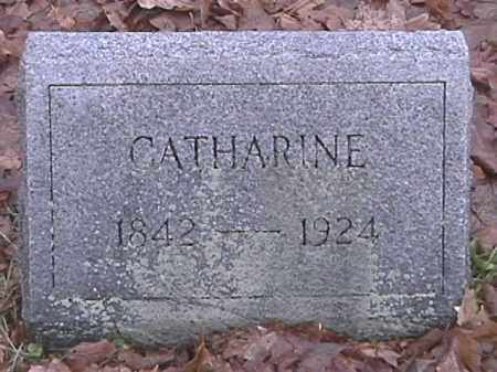 APPLE, CATHARINE - Champaign County, Ohio | CATHARINE APPLE - Ohio Gravestone Photos