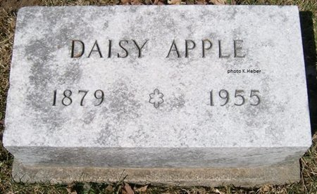 APPLE, DAISY MAE - Champaign County, Ohio | DAISY MAE APPLE - Ohio Gravestone Photos