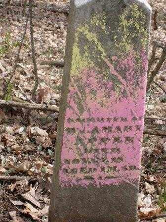 APPLE, DAUGHTER - Champaign County, Ohio | DAUGHTER APPLE - Ohio Gravestone Photos