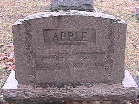 APPLE, AMY VIRGINIA - Champaign County, Ohio | AMY VIRGINIA APPLE - Ohio Gravestone Photos