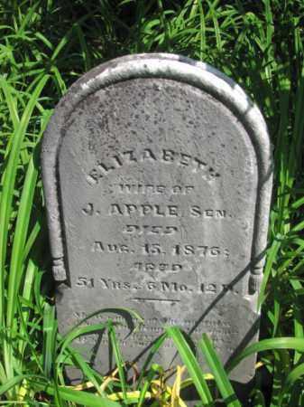 APPLE, ELIZABETH - Champaign County, Ohio | ELIZABETH APPLE - Ohio Gravestone Photos