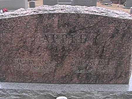 APPLE, FRANCIS MARION - Champaign County, Ohio | FRANCIS MARION APPLE - Ohio Gravestone Photos