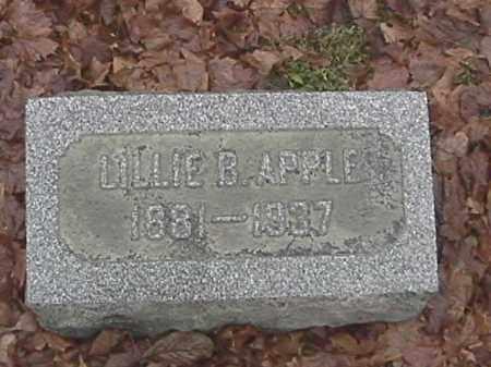 APPLE, LILLIE - Champaign County, Ohio | LILLIE APPLE - Ohio Gravestone Photos