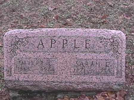 APPLE, SARAH E. - Champaign County, Ohio | SARAH E. APPLE - Ohio Gravestone Photos
