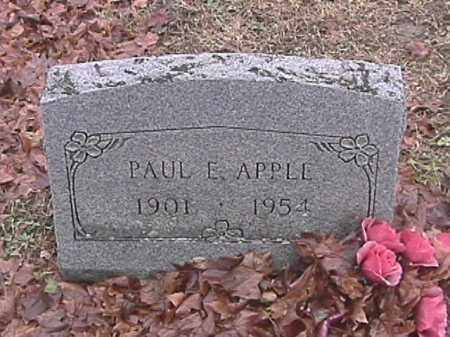 APPLE, PAUL E. - Champaign County, Ohio | PAUL E. APPLE - Ohio Gravestone Photos