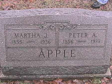 APPLE, PETER A. - Champaign County, Ohio | PETER A. APPLE - Ohio Gravestone Photos