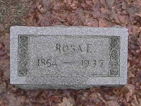APPLE, ROSA ELLEN - Champaign County, Ohio | ROSA ELLEN APPLE - Ohio Gravestone Photos