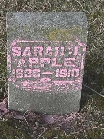 PENCE APPLE, SARAH JANE - Champaign County, Ohio   SARAH JANE PENCE APPLE - Ohio Gravestone Photos