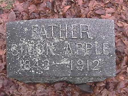 APPLE, SIMON - Champaign County, Ohio | SIMON APPLE - Ohio Gravestone Photos