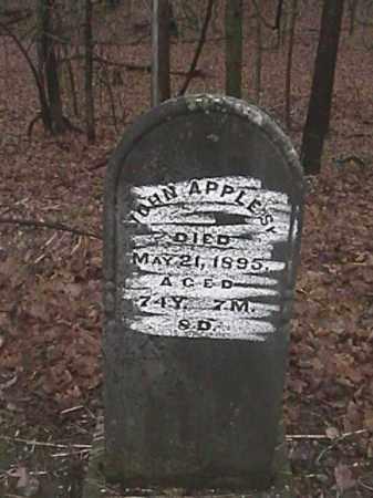 APPLE, SR., JOHN - Champaign County, Ohio | JOHN APPLE, SR. - Ohio Gravestone Photos