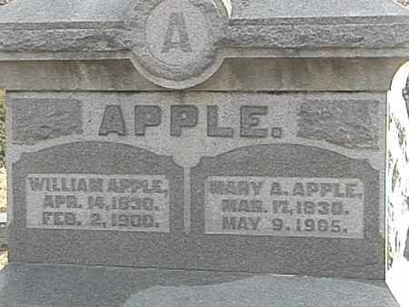 APPLE, WILLAIM - Champaign County, Ohio | WILLAIM APPLE - Ohio Gravestone Photos