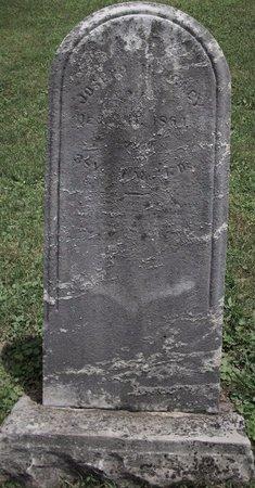 ARNEY, JOSEPH HENRY - Champaign County, Ohio | JOSEPH HENRY ARNEY - Ohio Gravestone Photos
