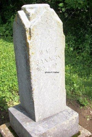 BANNON, WILLIAM FRANKLIN - Champaign County, Ohio | WILLIAM FRANKLIN BANNON - Ohio Gravestone Photos