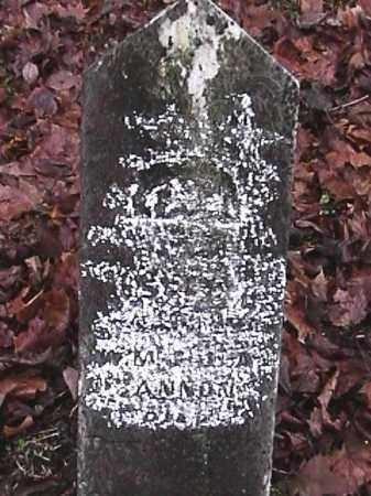 BANNON, WESLEY M. - Champaign County, Ohio | WESLEY M. BANNON - Ohio Gravestone Photos