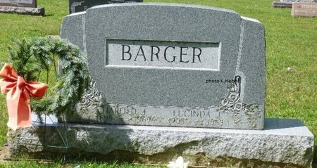 BARGER, LUCINDA JANE - Champaign County, Ohio   LUCINDA JANE BARGER - Ohio Gravestone Photos