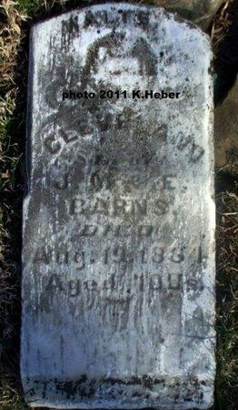 BARNS, WALTER CLEVELAND - Champaign County, Ohio | WALTER CLEVELAND BARNS - Ohio Gravestone Photos