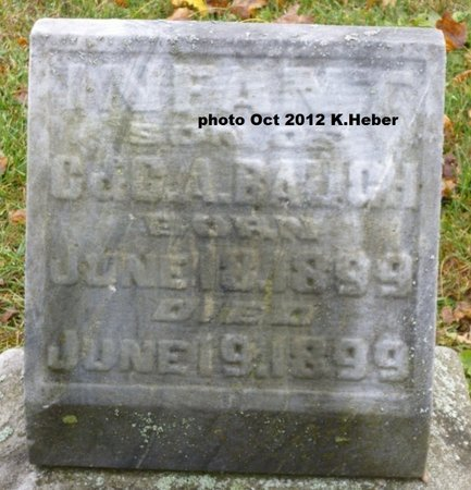 BAUGH, INFANT SON - Champaign County, Ohio | INFANT SON BAUGH - Ohio Gravestone Photos