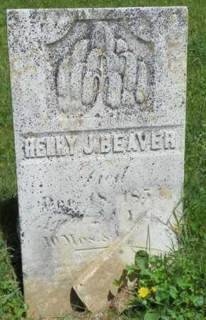 BEAVER, HENRY J. - Champaign County, Ohio | HENRY J. BEAVER - Ohio Gravestone Photos